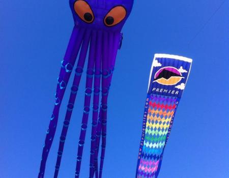 NC Festival by the Sea Kites