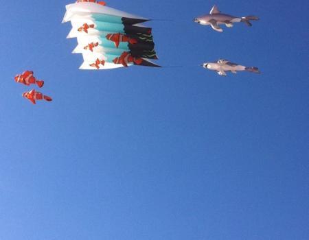 NC Festival by the Sea Kite Man