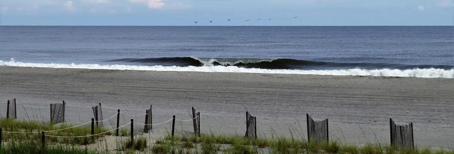 Birds flying in a line over the coast at Holden Beach