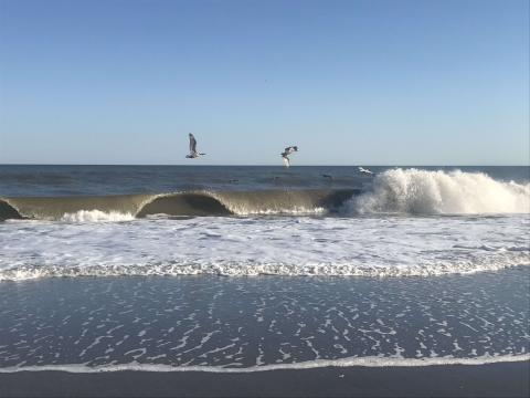 Seagulls flying along crashing waves on Holden Beach