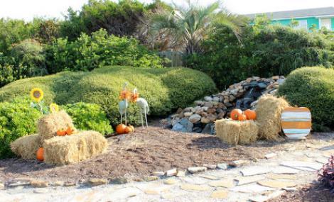 fall pumpkins on holden beach
