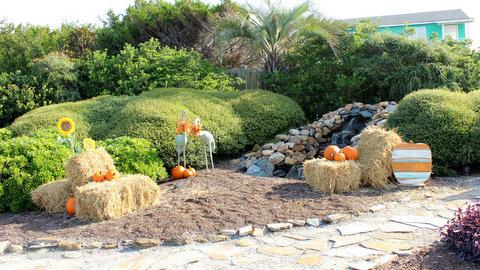 fall pumpkins on holden beach