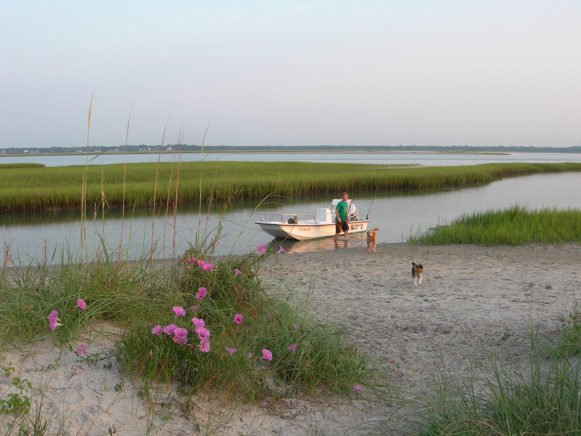 morning glory coastal north carolina