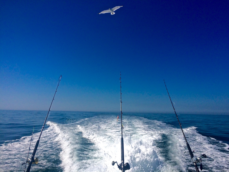 ocean charter fishing