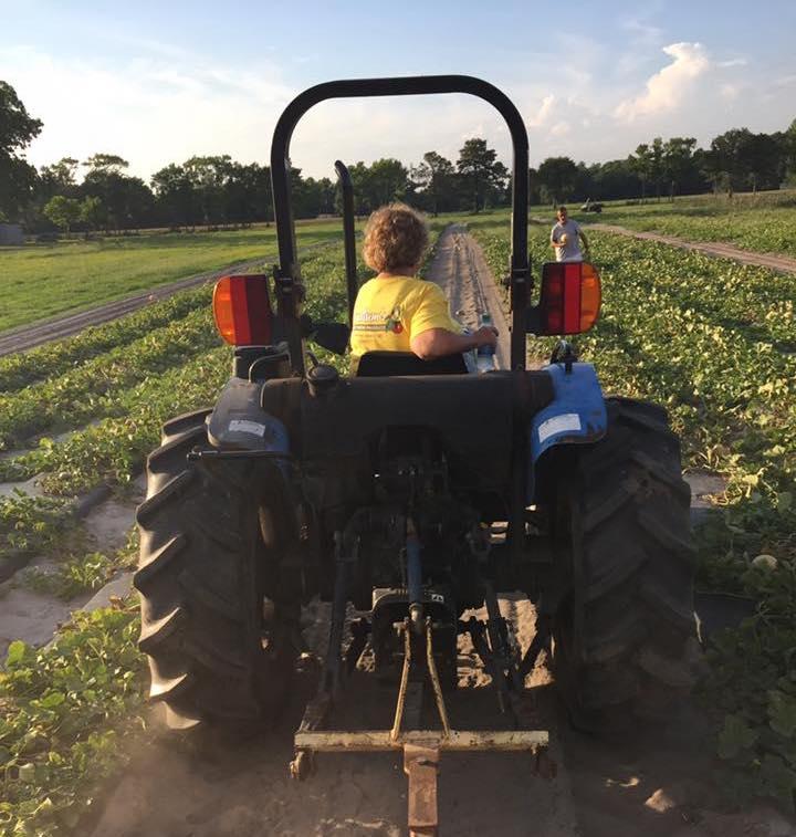 Sylvia Ludlum on tractor